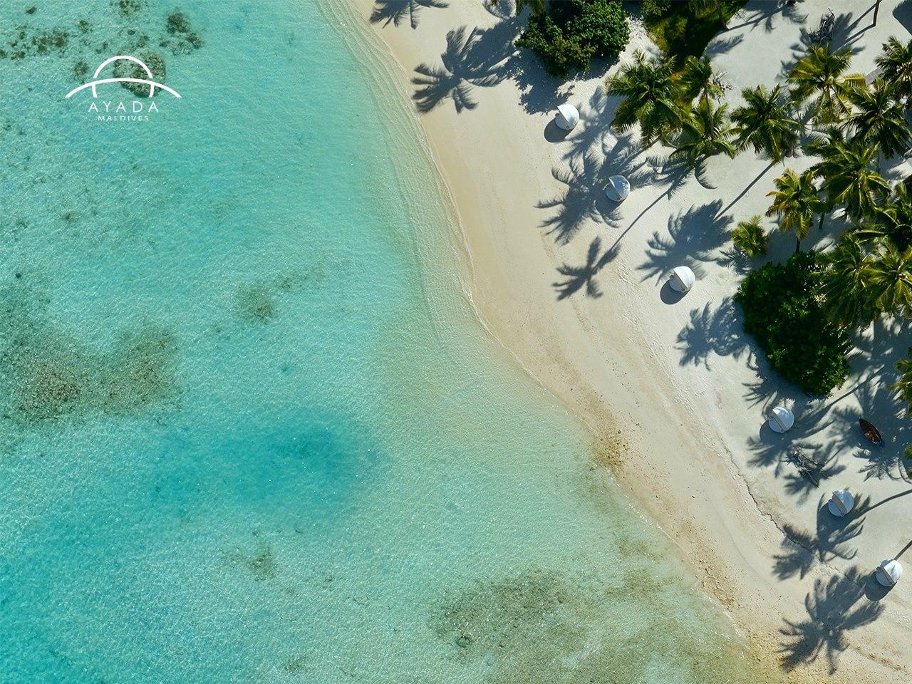 5 Hotels: Ayada Maldives | Love Daily Dose