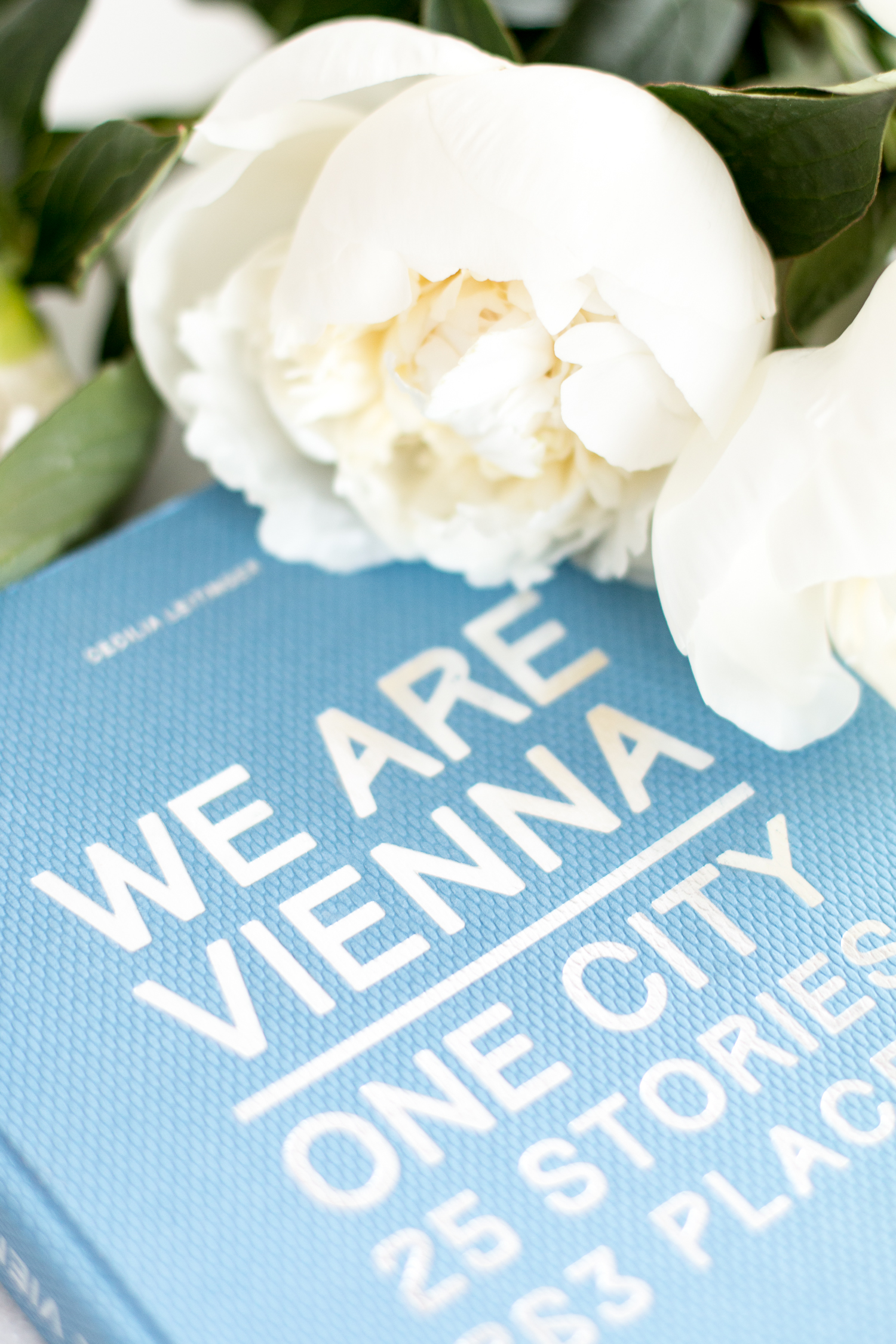 WE ARE VIENNA City Guide Wien - Book Review | Love Daily Dose