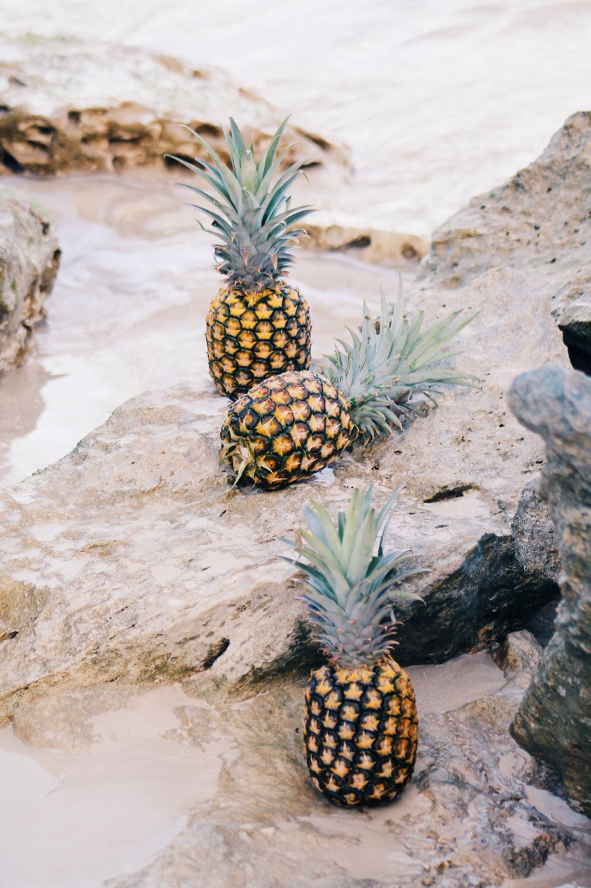 Etsy Picks: Pineapples