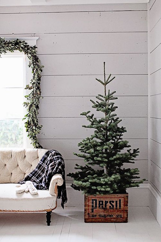 Inspire: One Month Until Christmas | The Daily Dose