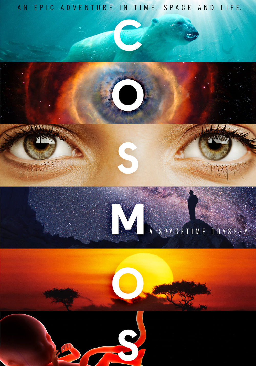 Cosmos: A Spacetime Odyssey Documentary | Love Daily Dose