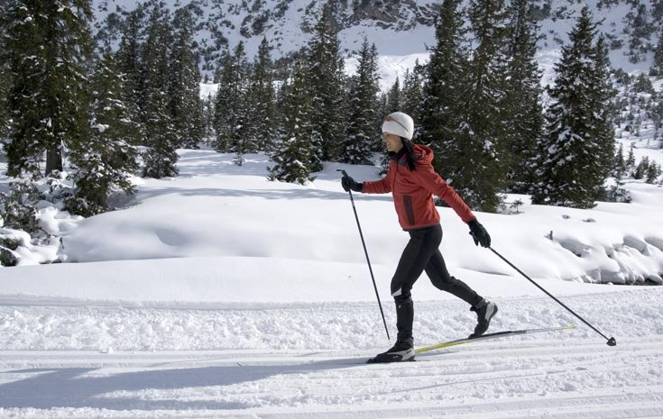 5 Activities To Stay Fit This Winter | The Daily Dose