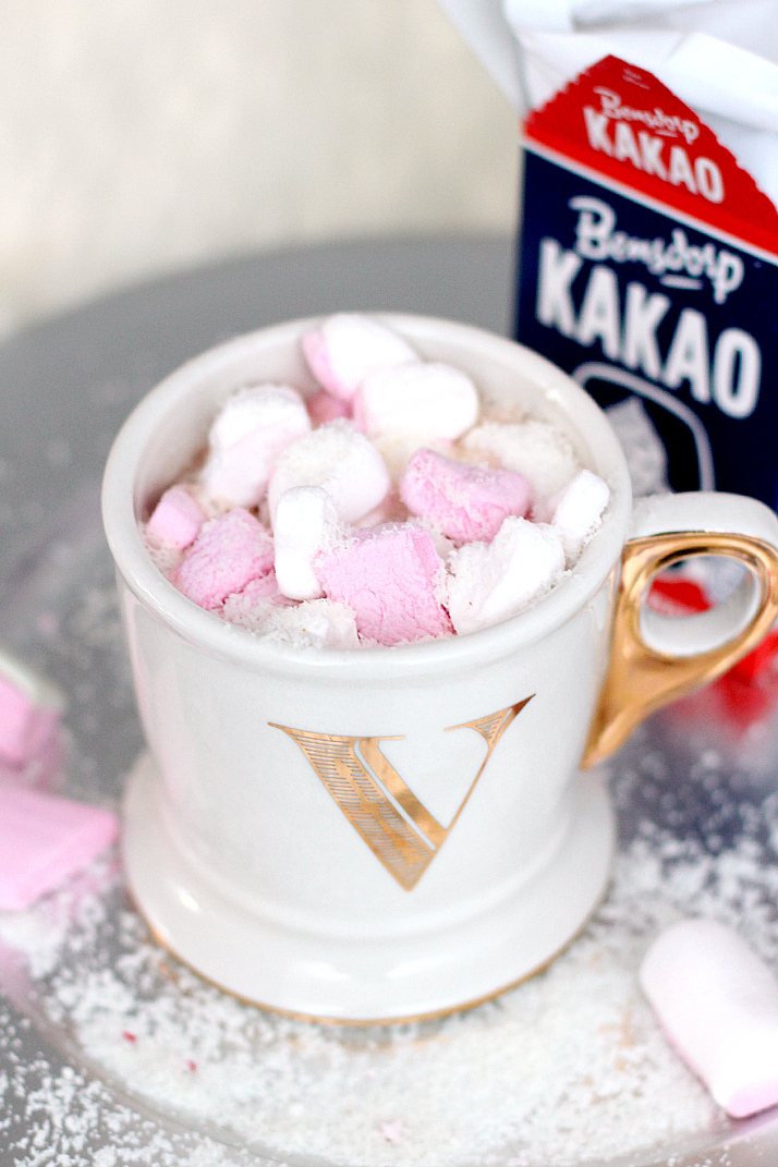 3 Delicious Hot Chocolate Recipe | The Daily Dose
