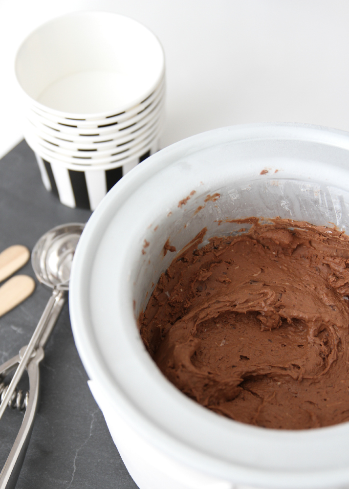 Homemade Chocolate-Coconut Ice Cream | Love Daily Dose
