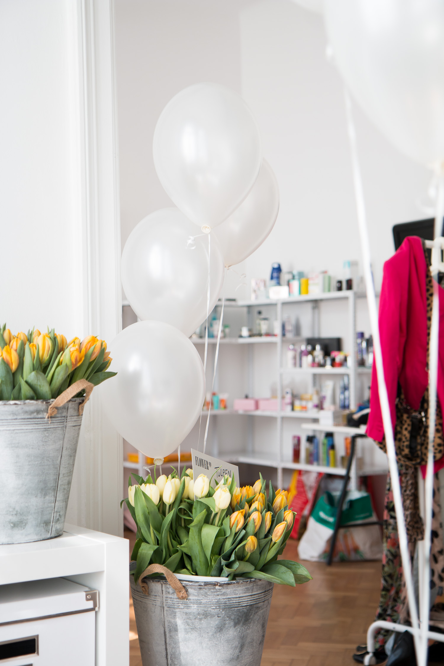 TDD Pop-Up Store | The Daily Dose