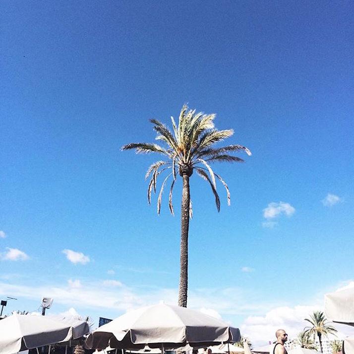 Follow Us Around: Ibiza | The Daily Dose