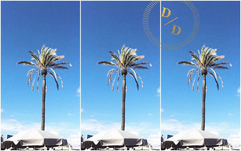 Follow Us Around: Ibiza Calling