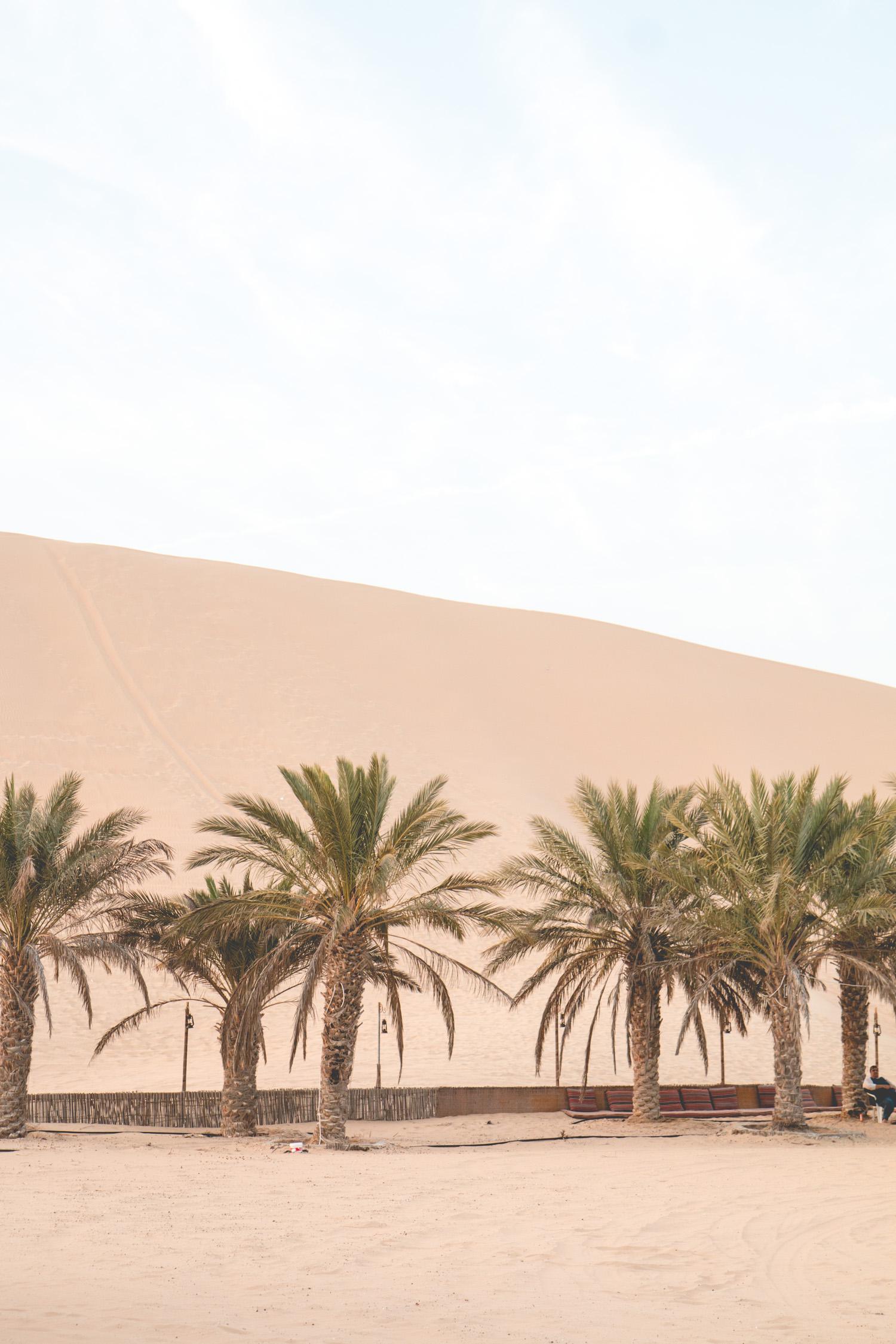 Things-To-Do-Abu-Dhabi-28