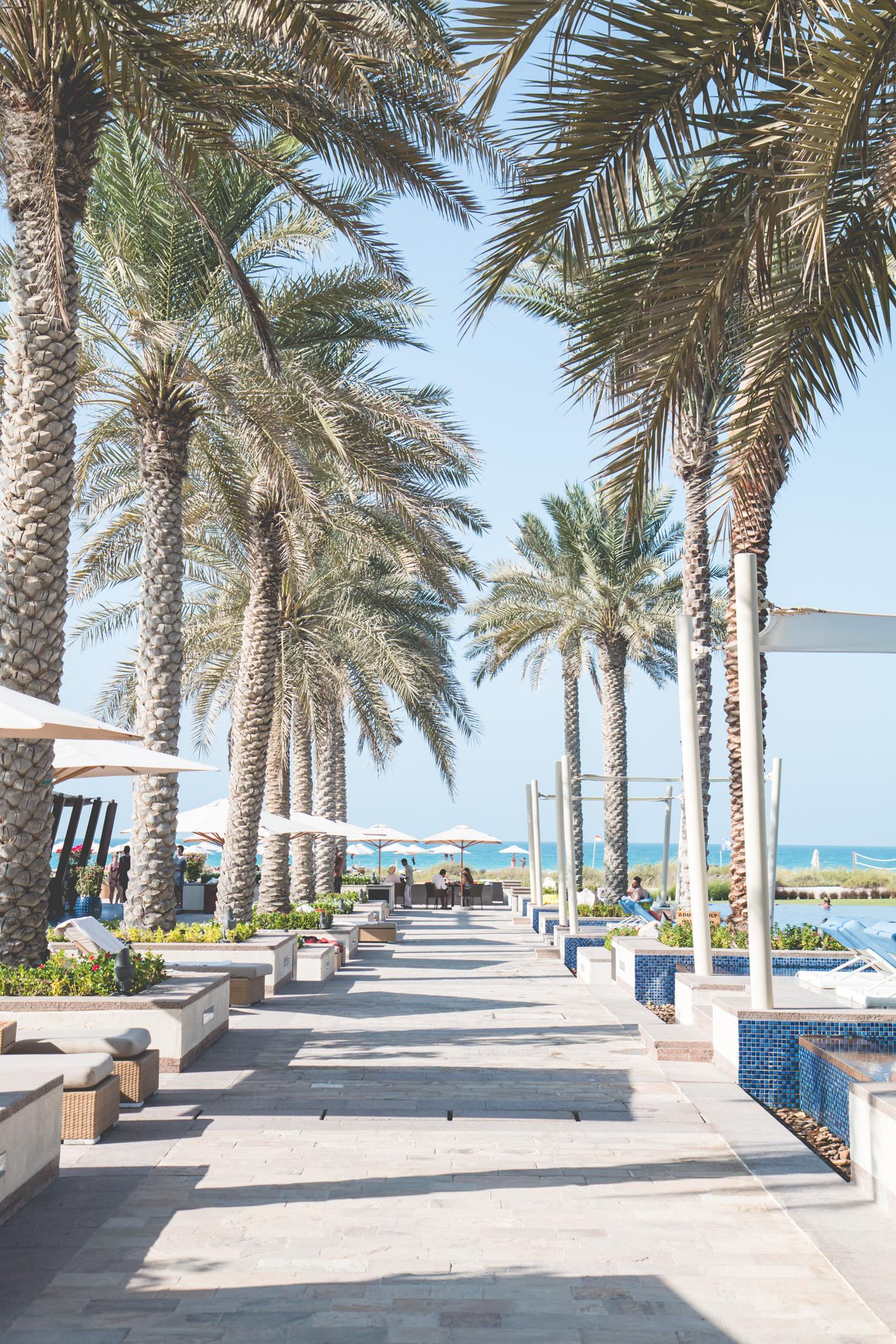 Things-To-Do-Abu-Dhabi-50
