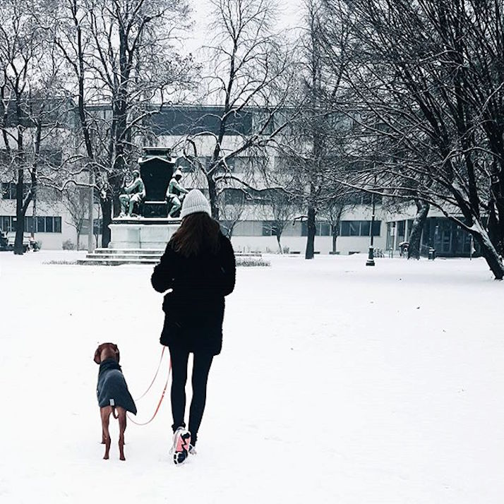 #lovedailydose: Winter Wonderland | The Daily Dose