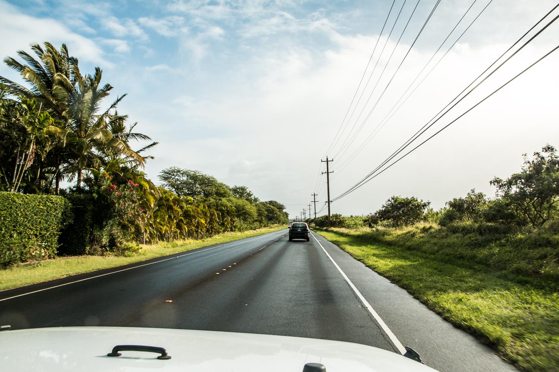 Travel Diary Maui | Love Daily Dose