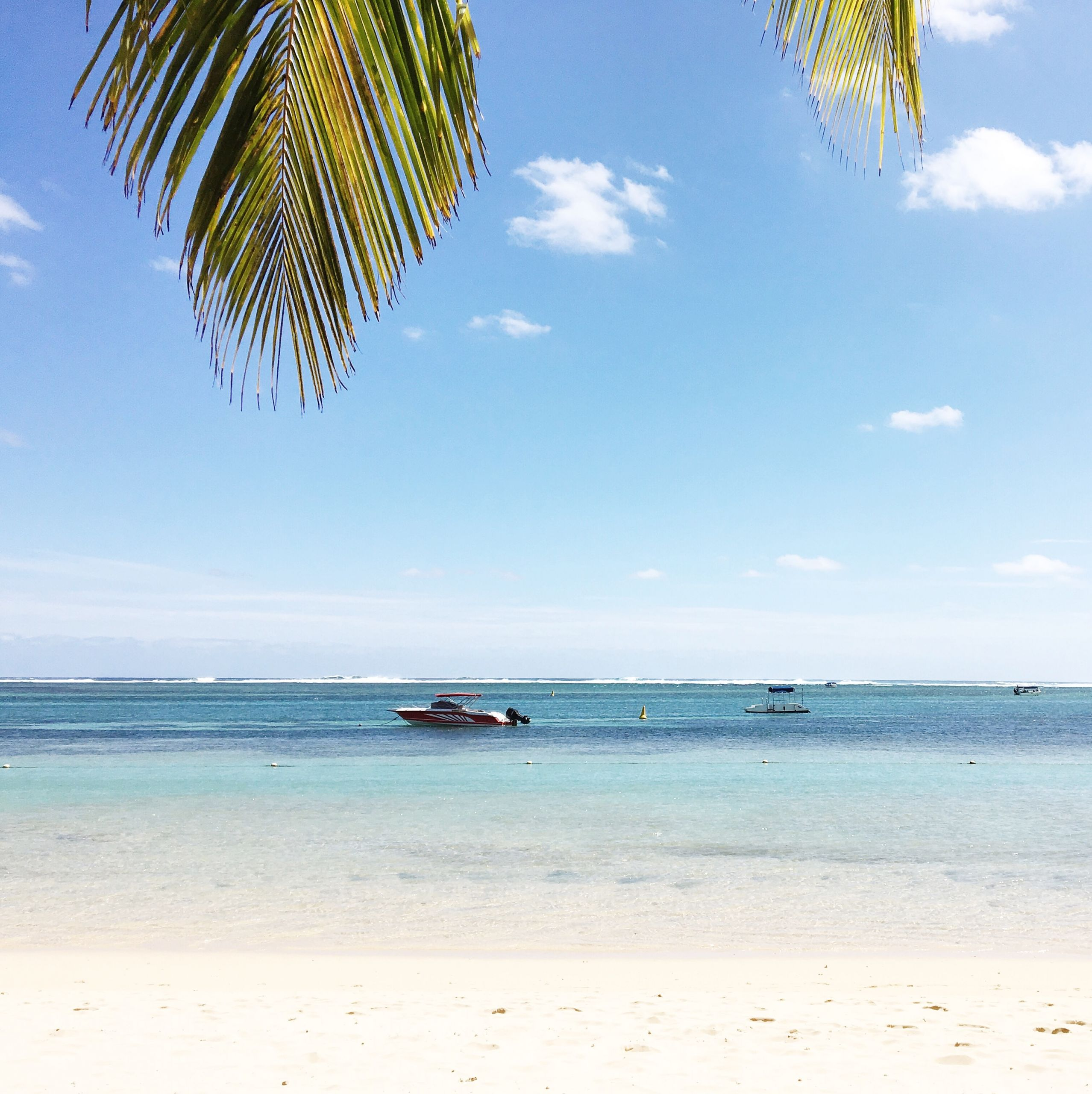 Video: Follow Us Around Mauritius | Love Daily Dose