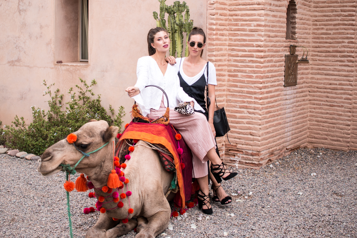 Marrakech Travel Diary | The Daily Dose
