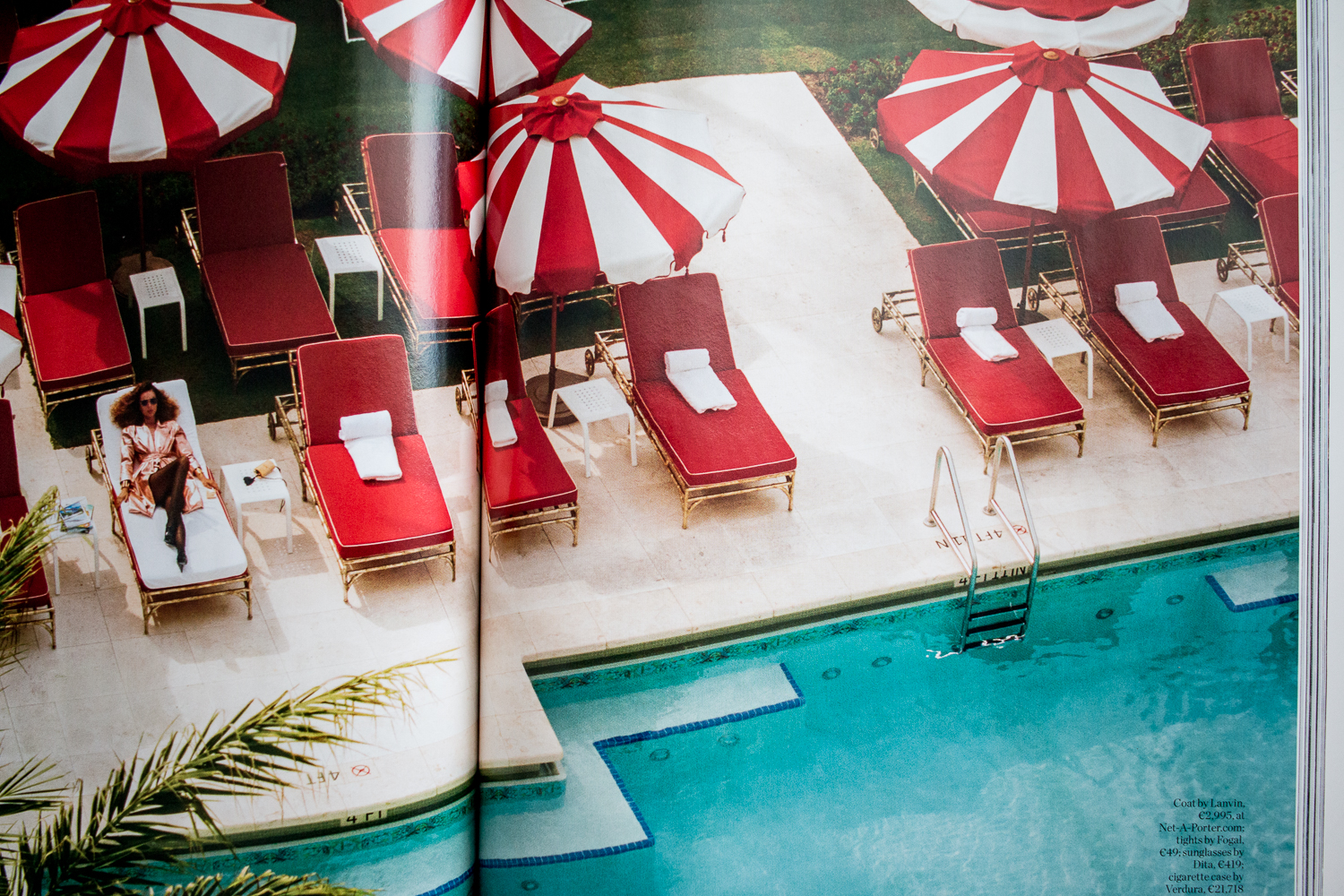 5 Hotels Miami South Beach | Love Daily Dose