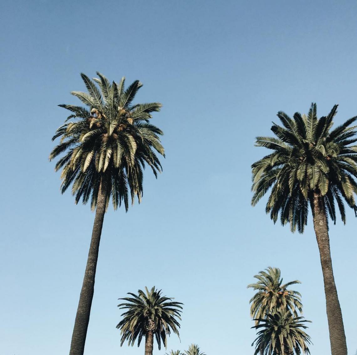 5 Hotels: California Lovin'