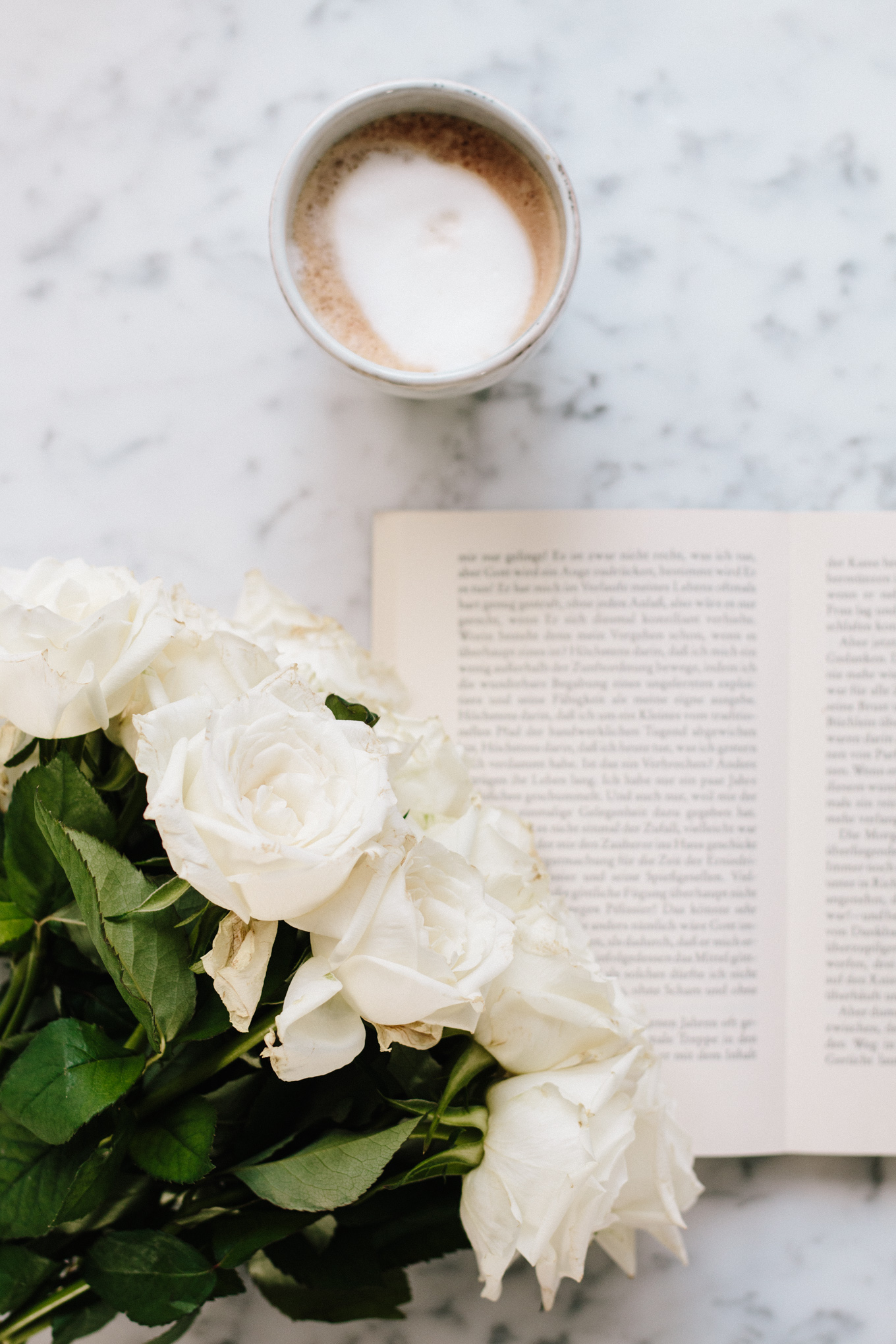 The Best Reads For Spring | The Daily Dose