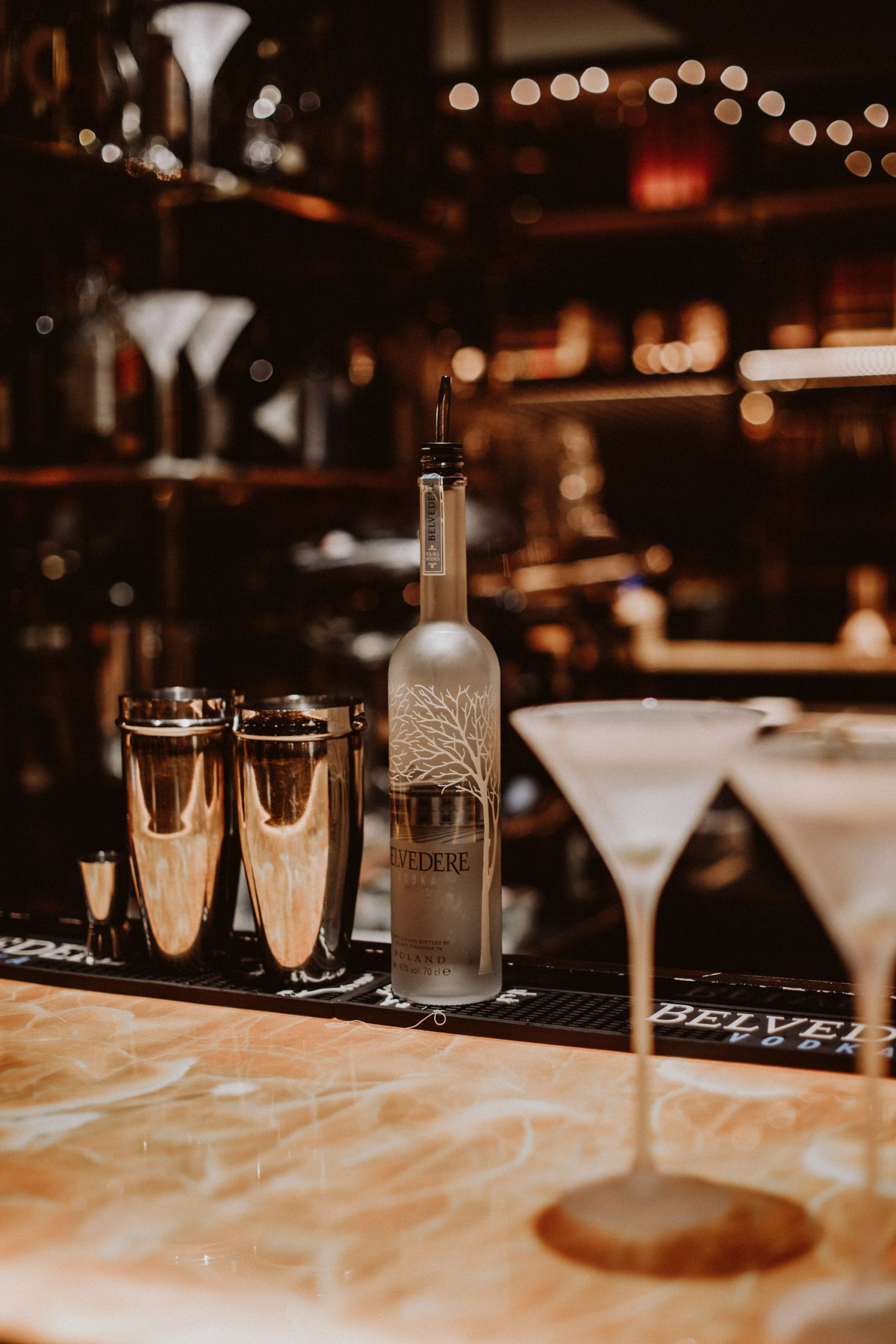 Belvedere 007 Martini | The Daily Dose