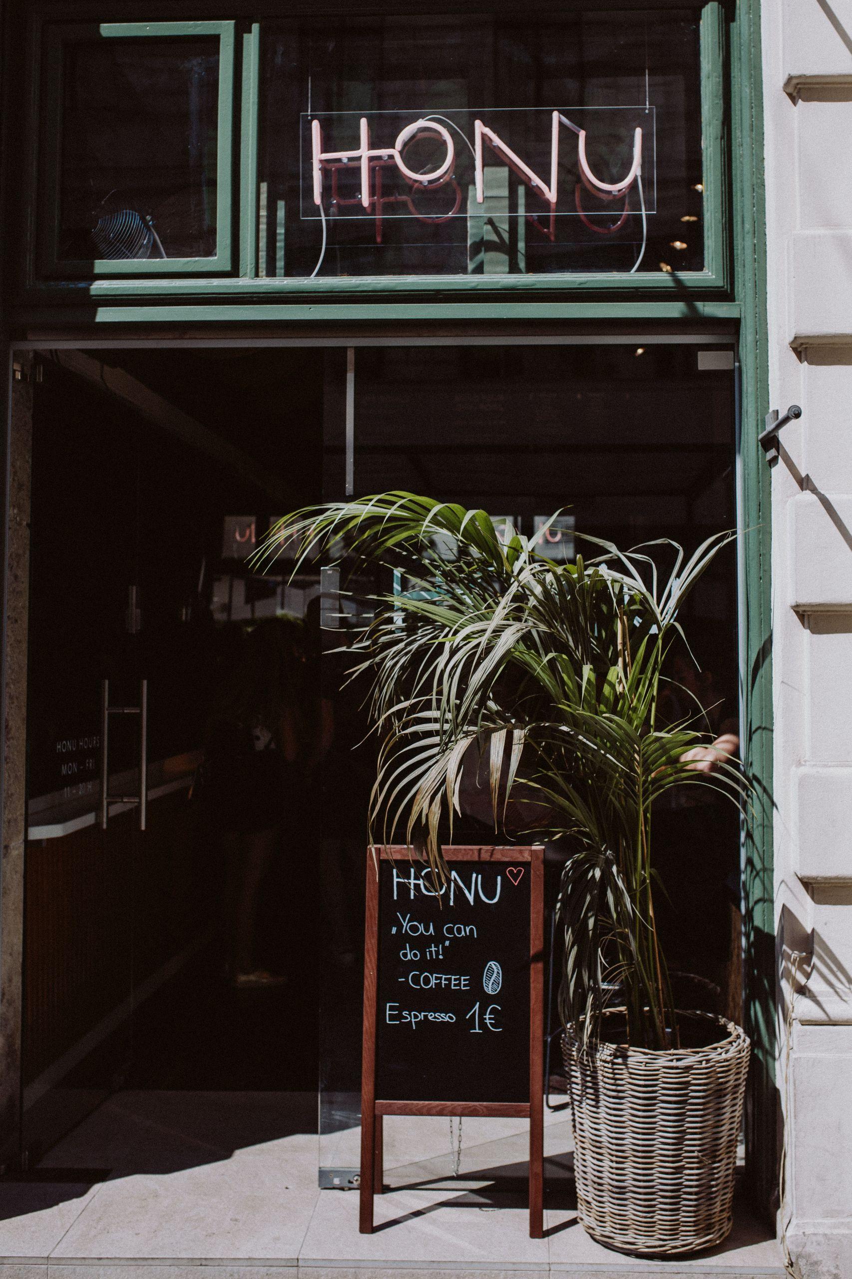 Honu Tiki Bowls Vienna | The Daily Dose
