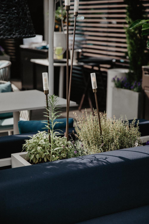 Salzburg Pick: Hotel Stein Seven Senses Rooftop Terrasse | The Daily Dose